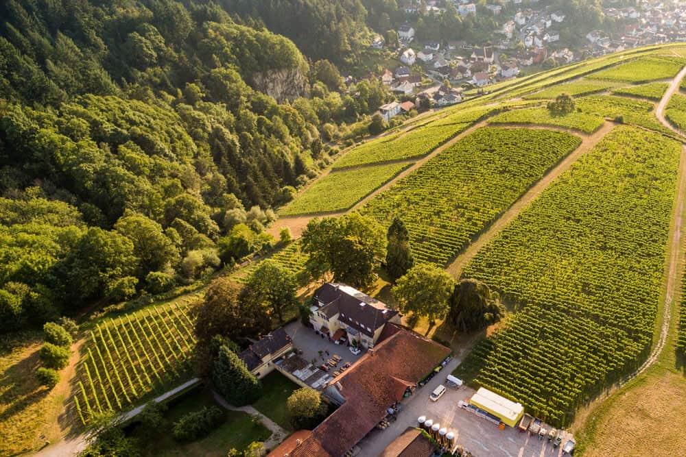 NÄGELSFÖRST winery Baden-Baden